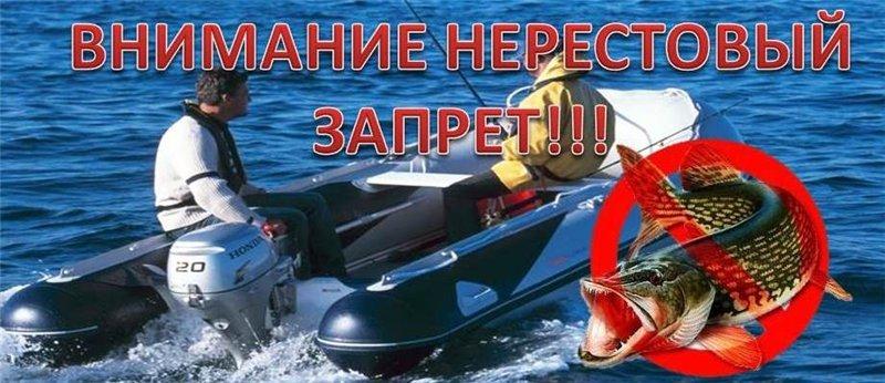Нерестовые участки Самарской области: